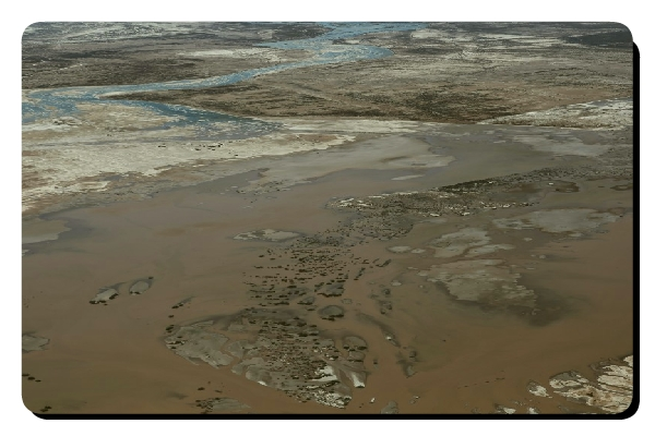 colorado river estuary
