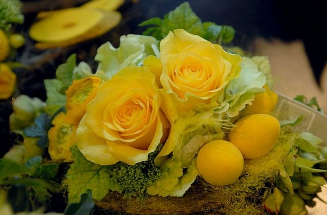 Konotasi negatif bunga mawar kuning, masak sih ada?