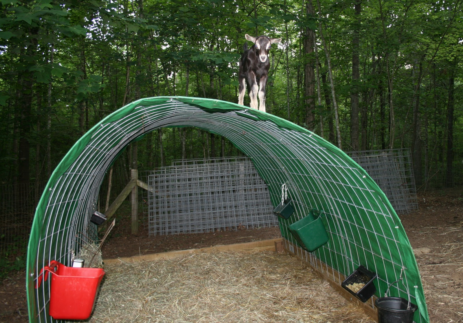 Dog Kennels Portable Chain Link