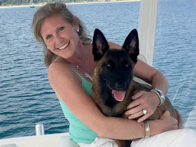 Un perro nada 10 kilómetros y camina 20 para salvarse tras caer al mar