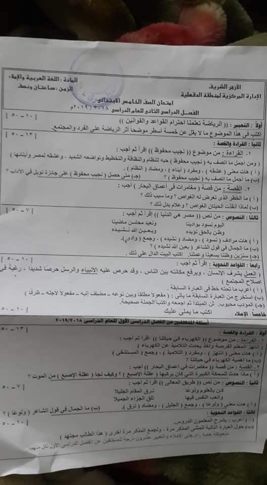 تجميع امتحانات العربي والعلوم والدراسات والانجليزي للصف الخامس الابتدائي ترم ثاني 2019 58380990_2341797116099739_2017850544185409536_n