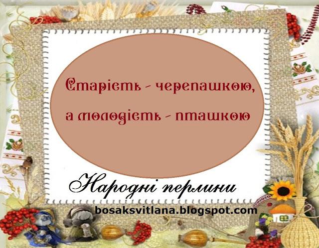 Українські прислів'я. Старість - черепашкою, а молодість - пташкою