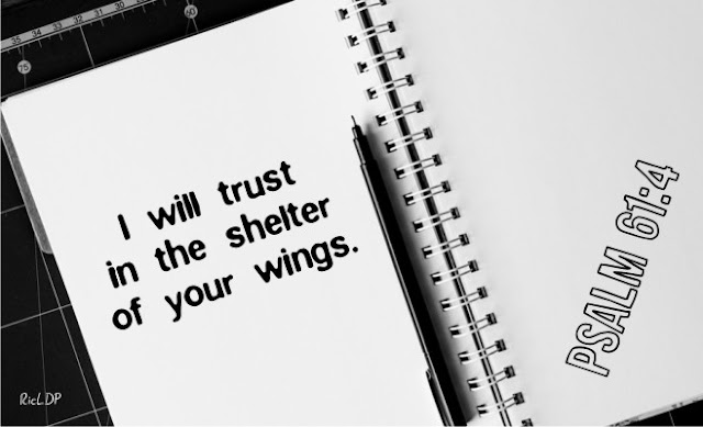 I will trust in the shelter of your wings ~Psalm