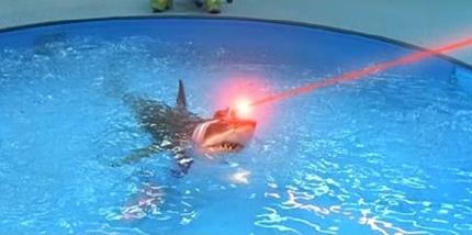 http://2.bp.blogspot.com/-6vk11N4F-mE/TkG5kDuqi1I/AAAAAAAABxw/rsyUVbmvLV0/s1600/tiburon+con+rayo+laser+1.jpg