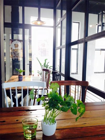 Trên bàn đặt những chậu cây xanh tạo cảm giác mát lành.