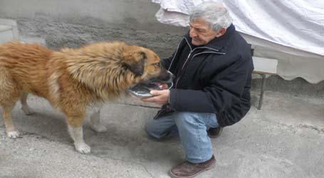 e9f6f71f2180 Δεν υπάρχει κτηνίατρος με σύμβαση για να φροντίσει τα αδέσποτα ζώα