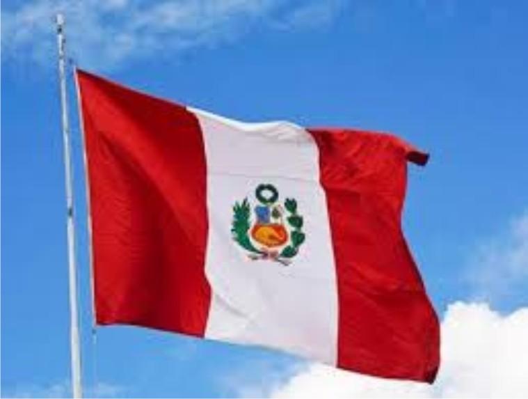 Bandera de guadalupe peru