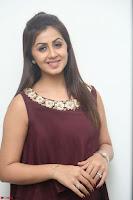Nikki Galrani in a Brown Shining Sleeveless Gown at Nakshatram music launch ~  Exclusive 069.JPG