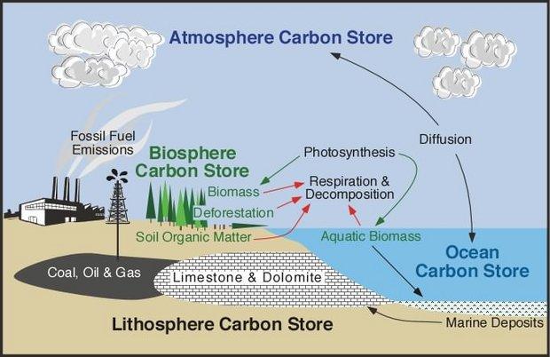 scientific explorer earth 39 s atmosphere part 2 composition. Black Bedroom Furniture Sets. Home Design Ideas