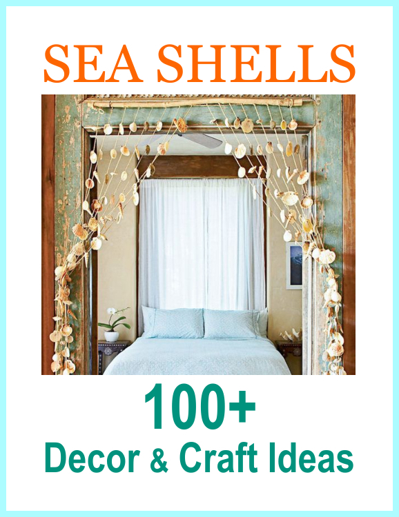 Seashell Decor Craft Project Ideas