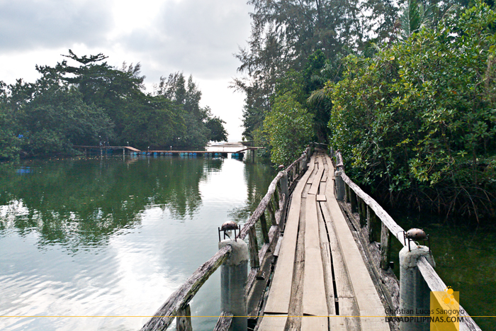 Koh Chang Klong Prao Beach