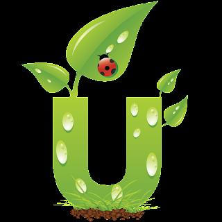 Alfabeto Verde con Mariquita, Tortolita, Catarina o Vaquita de San Juan.