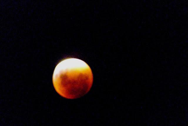 Eclipse - Super Lua -  Lua de Sangue - São Paulo. Créditos: Richard Cardial / Galeria do Meteorito