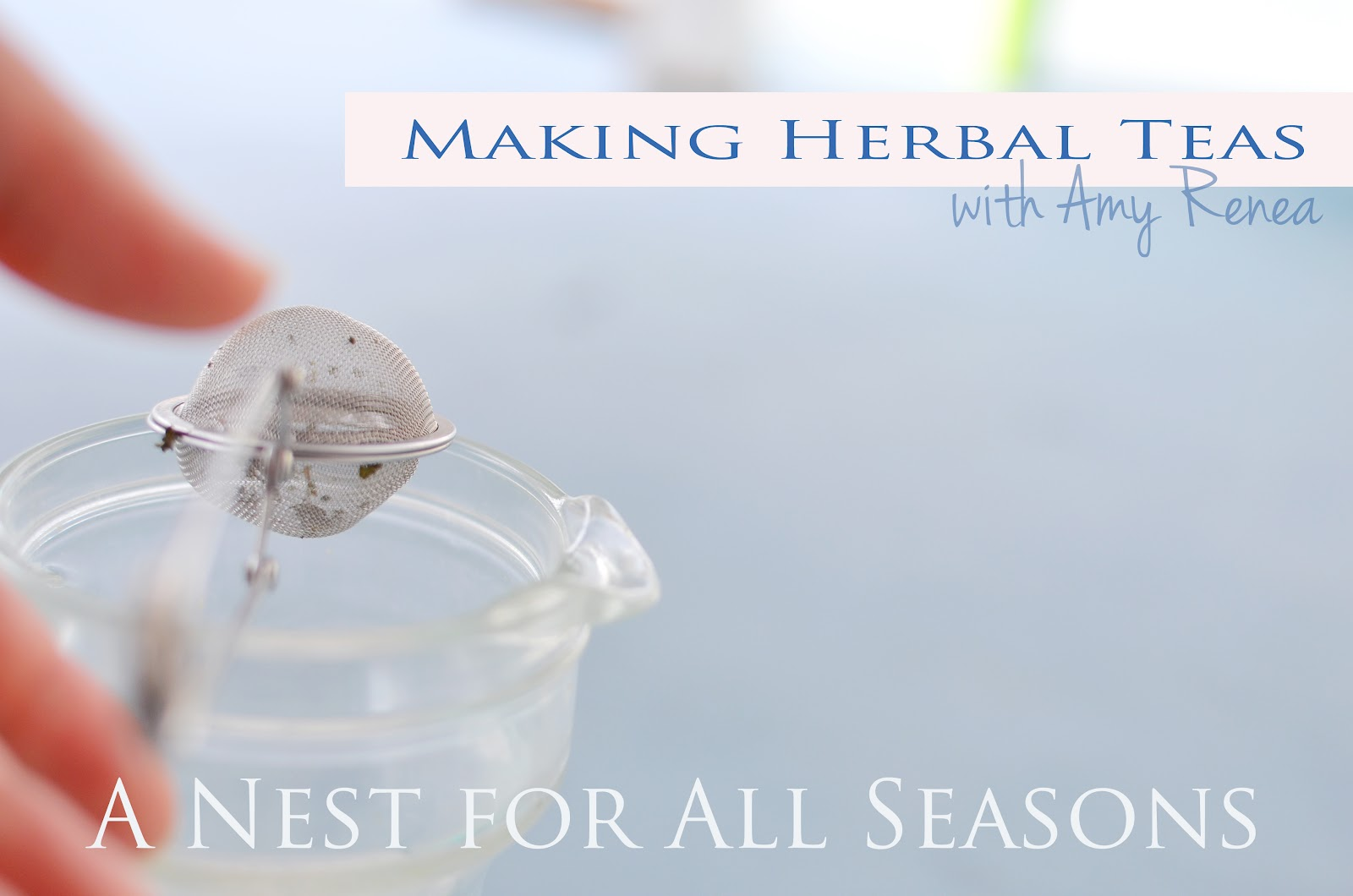 How to Make Herbal Tea with Amy Renea at A Nest for All Seasons