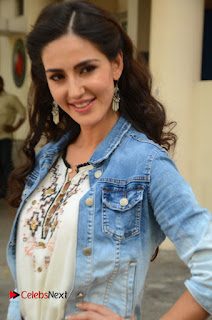 Actress Farah Karimi Pictures at Thikka First Look Launch  0013.JPG