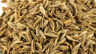 Cumin Seeds / Jeera for Metabolism