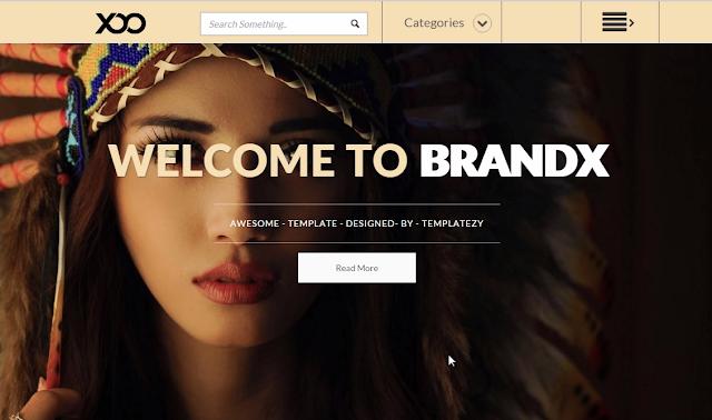 Brandx Blogger Template 2016