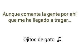 Los Inquietos del Vallenato Jhon Alex Ojitos de Gato significado de la canción.