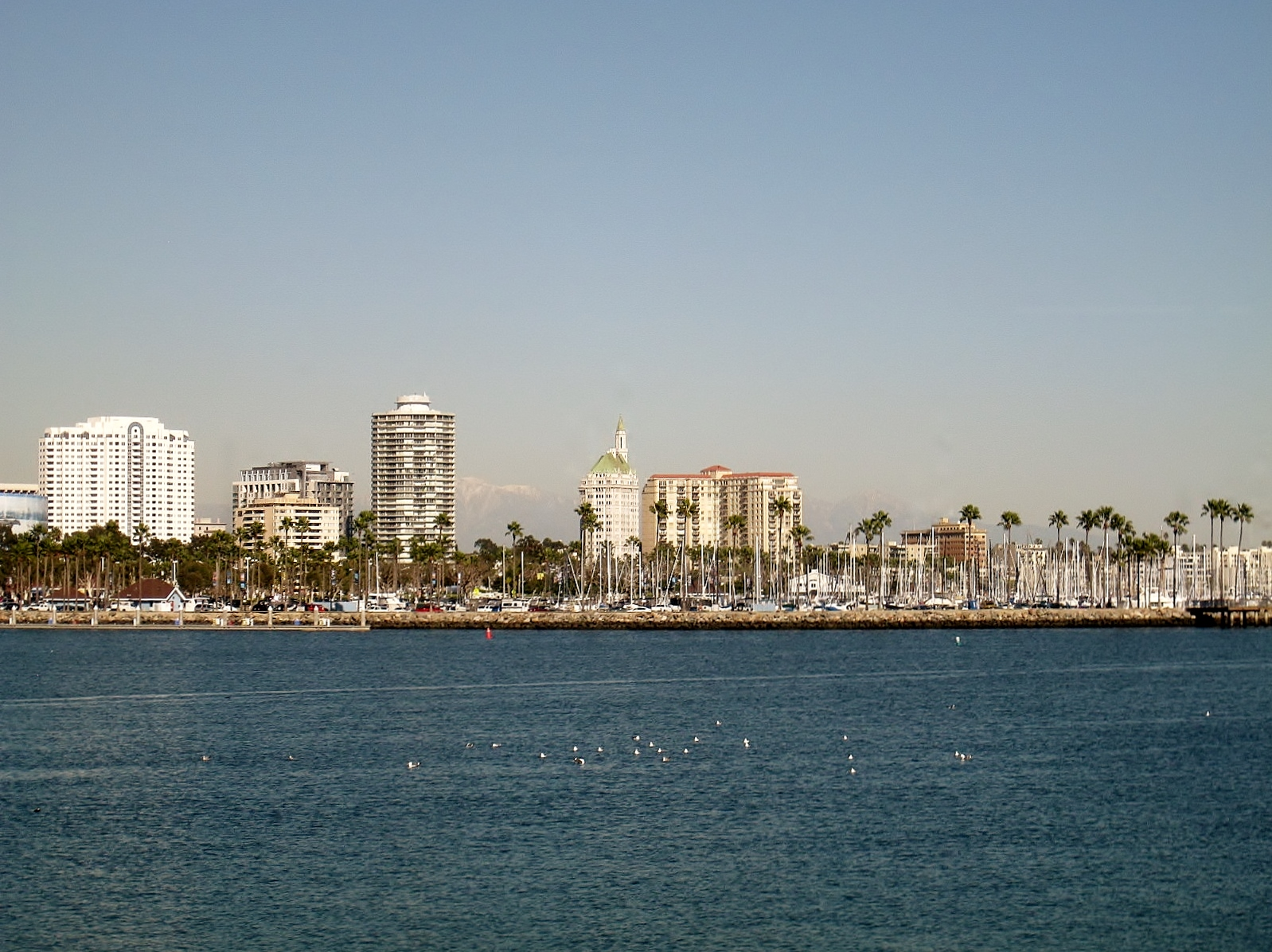 Long Beach/Southern California Real Estate: More Realistic