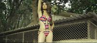 surveen chawla bikini8.JPG