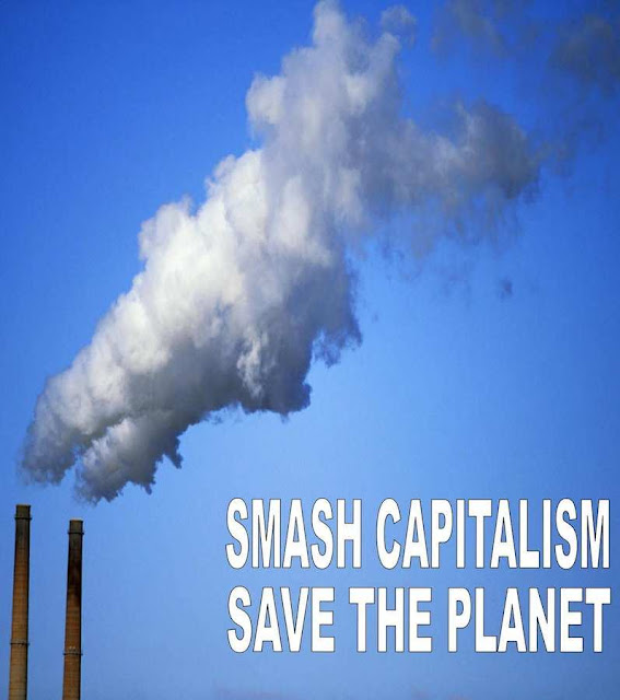 Anti-capitalismo visceral no cerne verde