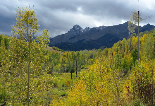 Weight Walk Along the Uncompahgre on a Fall Day