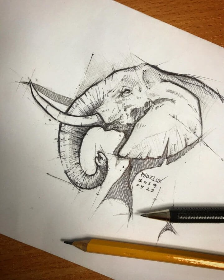 09-Elephant-Psdelux-Fineliner-Ink-and-Pencil-Animal-Drawings-www-designstack-co
