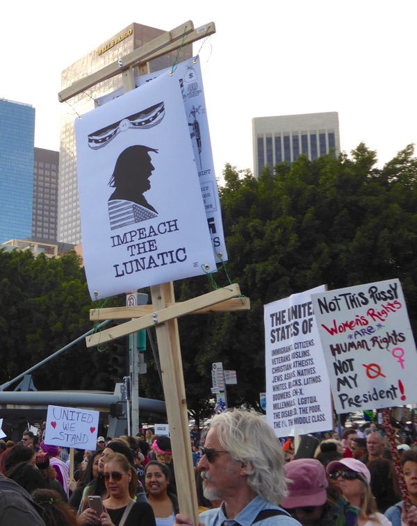 Womens March LA Impeach the lunatic sign