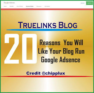 20 Reasons you will like your blog or website to run google adsence
