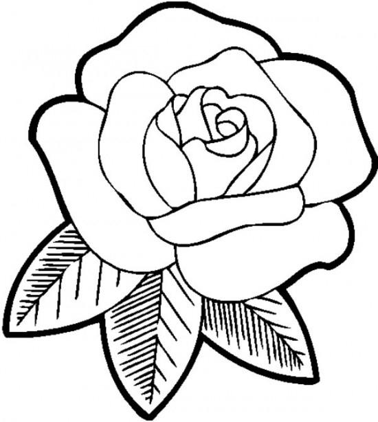 rosa para colorear e imprimir
