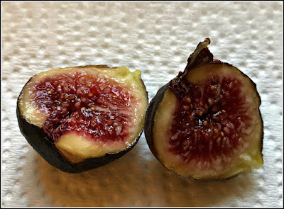 September 18, 2018 Enjoying a harvest of figs from our fig tree