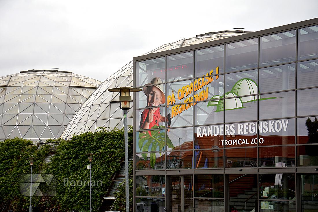Dania - Randers Regnskov - Tropical Zoo - atrakcje turystyczne Danii, przewodnik, informacje praktyczne, co warto zobaczyć w Danii