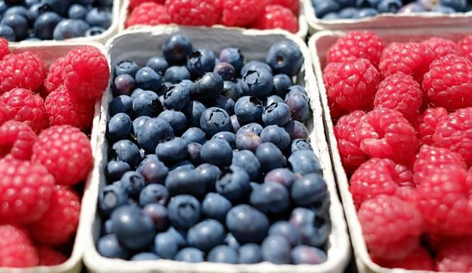 diet buah-buahan