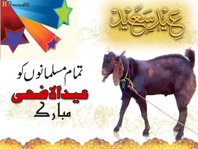Best Wallpaper Of Bkra Eid 2016