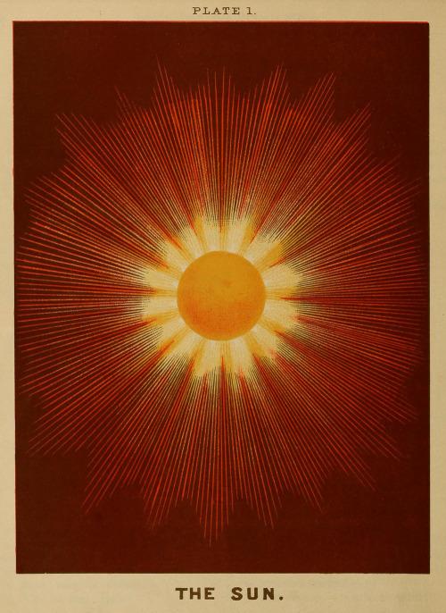 #the #sun #rise