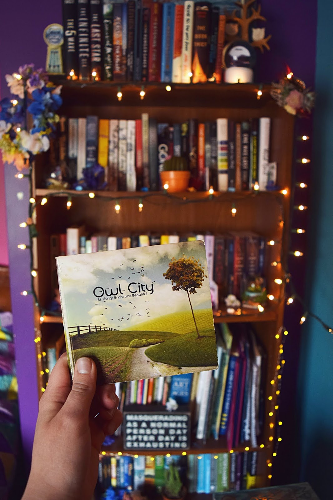 Olivia J, The WordShaker: Owl City's