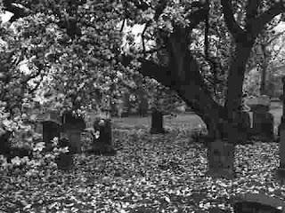 تفسير رؤية الموت وخروج الروح والتشهد في المنام بالتفصيل