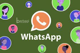 Apa Itu Fitur Picture in Picture (PIP) di WhatsApp