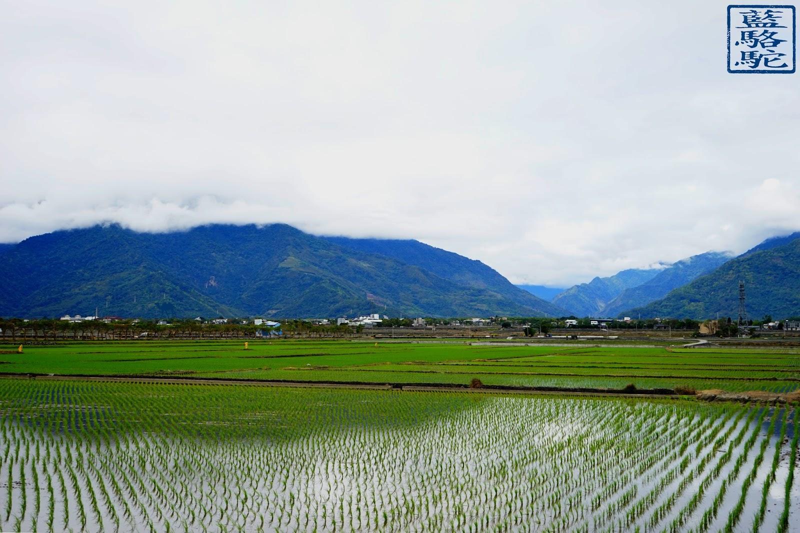 Le Chameau Bleu - Shichang vu des rizieres- rando velo route taiwan