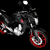 HONDA - CB250 TWISTER 2016 DO GRAU - DOWNLOAD