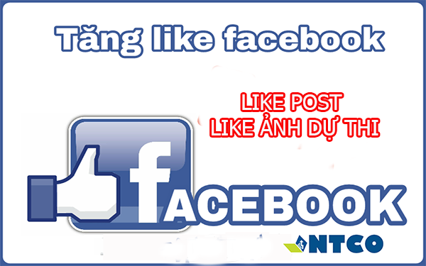 tang like post facebook
