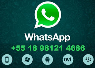 Use o WhatsApp no seu Computador