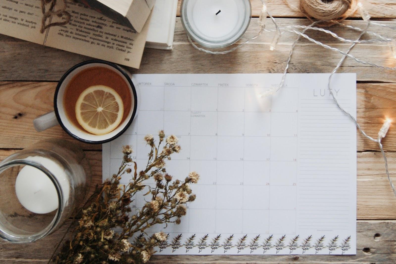 Planner - luty 2018 do druku