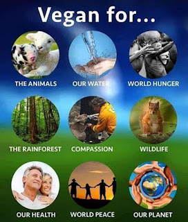 Porqué vegano