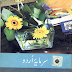 URDU for 2nd Year  (Sarmaya-e-Urdu) Download Free Complete Book - Punjab Text Books
