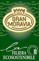 http://www.granmoravia.it/
