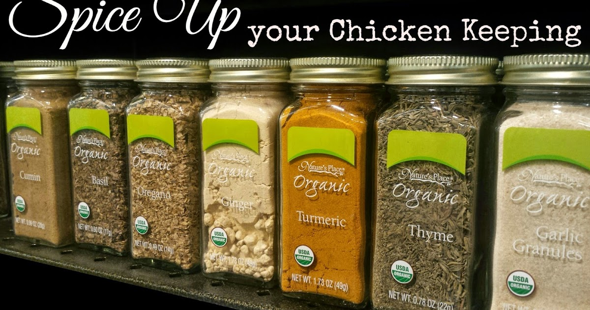 Spice Up Your Chicken Keeping For Better Flock Health Fresh Eggs
