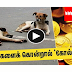 Gold coins are now being offered to the person who kills the most number of st dogs in Kerala state.