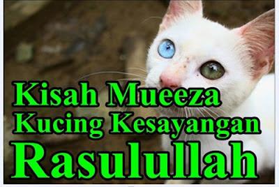 http://dayahguci.blogspot.com/2016/10/kisah-kucing-rasulullah-bernama-muezza.html