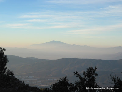 Nevado de Colima visto desde el Cerro Viejo